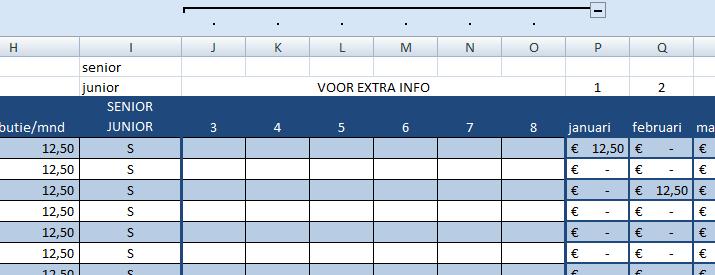 het tabblad ledenadministratie heeft 6 kolommen voor invoer van eigen informatie